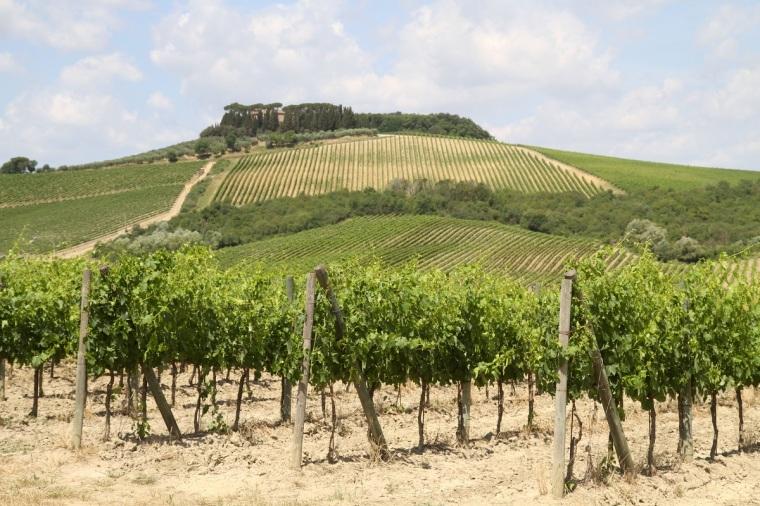 montereggioni landskap 2