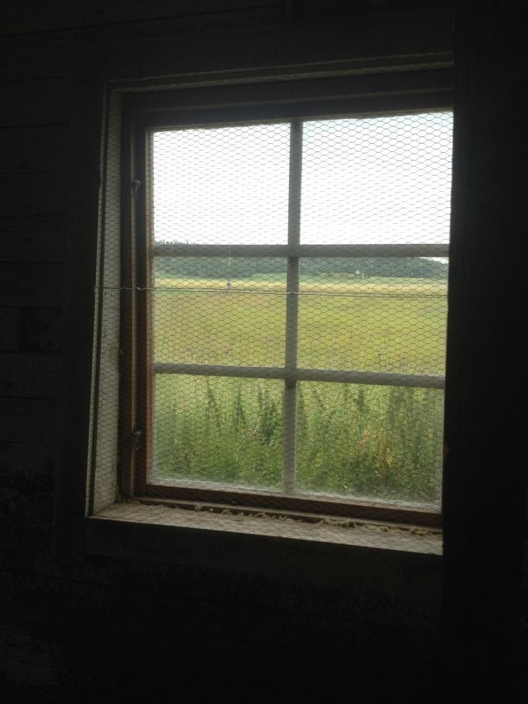 hönshus fönster