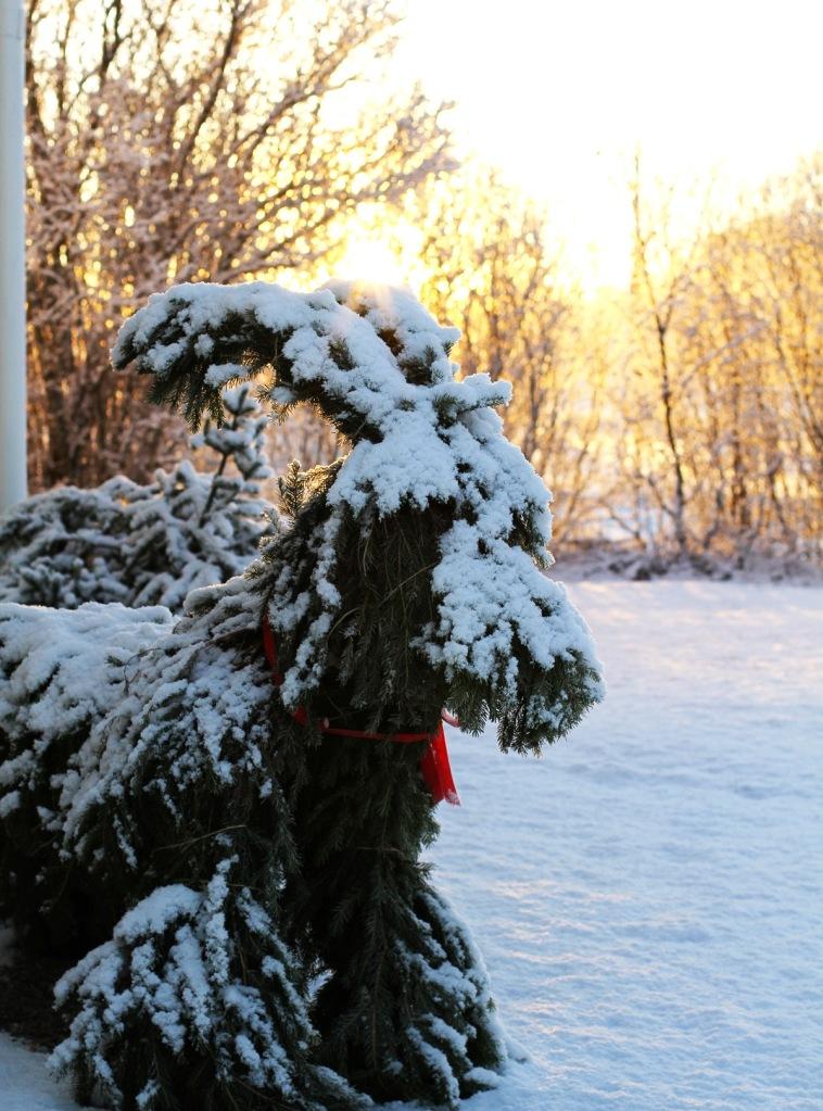 julbock snö