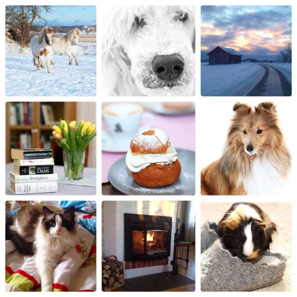 januari collage